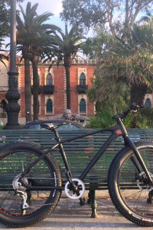 bollani-biciclette-sport